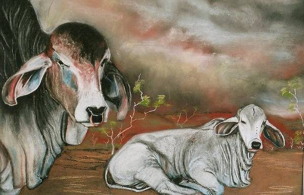 Pastel Painting Art Print featuring the painting A Lot Of Bull by Sandra Sengstock-Miller