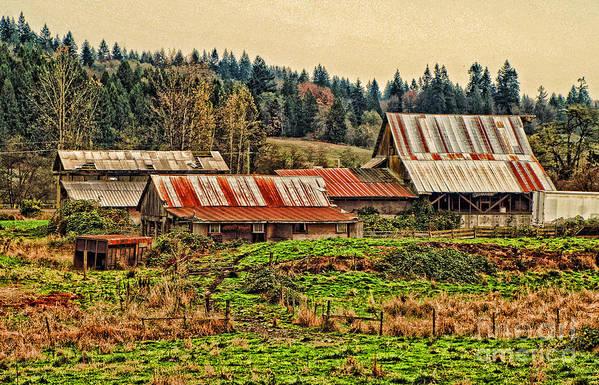 Barn Art Print featuring the photograph Barns On A Farm by Dawn Harris