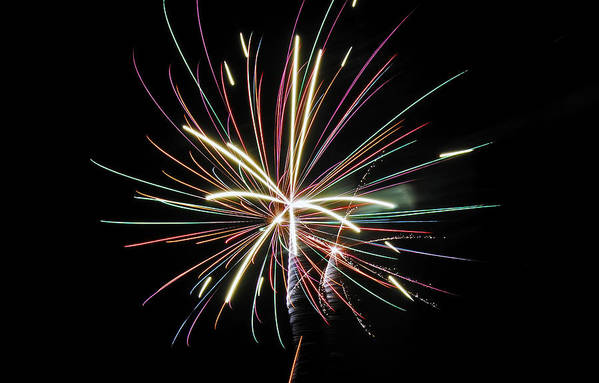Fireworks Art Print featuring the photograph Celebration by Gene McKinley