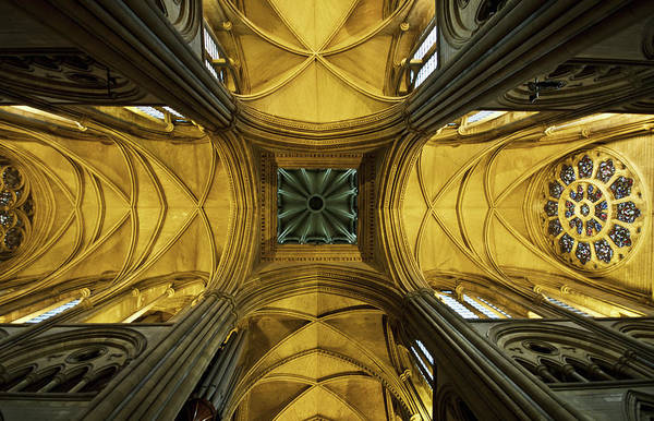 Arch Art Print featuring the photograph Looking Up At A Cathedral Ceiling by James Ingham / Design Pics