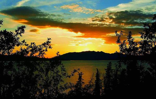 North America Art Print featuring the photograph Marsh Lake - Yukon by Juergen Weiss