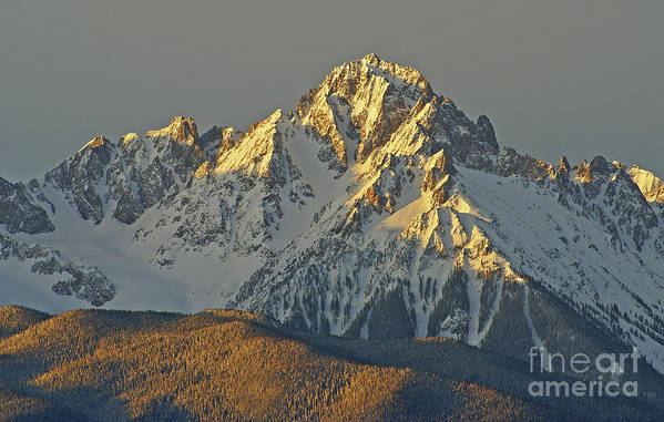 Colorado Art Print featuring the photograph Morning Light On Sneffels by Kelly Black