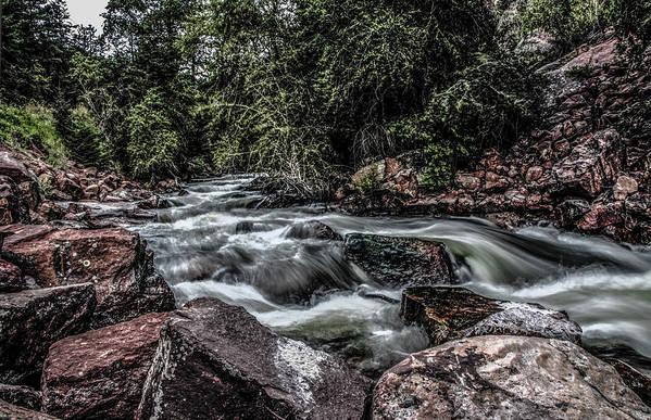 Colorado Art Print featuring the photograph Mountain Stream by Ray Congrove