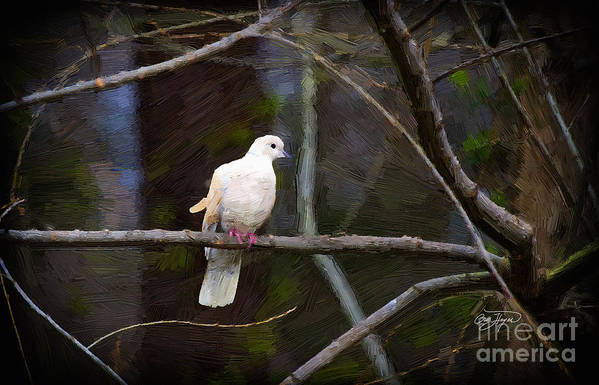 Peace Be With You Canvas Art Print featuring the painting Peace Be With You by Cris Hayes
