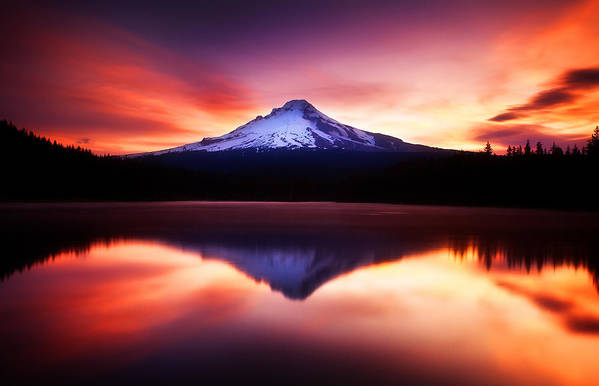 Trillium Lake Art Print featuring the photograph Peaceful Morning On The Lake by Darren White