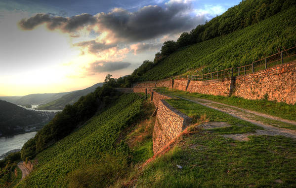 Germany Art Print featuring the photograph Rhine River Hill by John Keyser