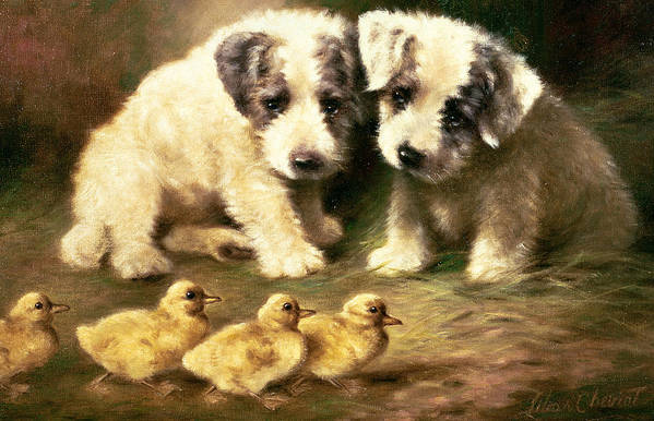 Dog Art Print featuring the painting Sealyham Puppies And Ducklings by Lilian Cheviot
