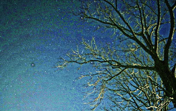 Sky Art Print featuring the photograph Solemn Sky by Paul Wilford