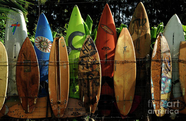 Hawaii Art Print featuring the photograph Surfboard Fence 4 by Bob Christopher