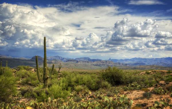 Arizona Art Print featuring the photograph Visions Of Arizona by Saija Lehtonen
