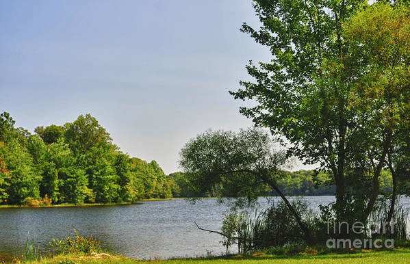Lake Art Print featuring the photograph Fall Forthcoming by Carol A Commins