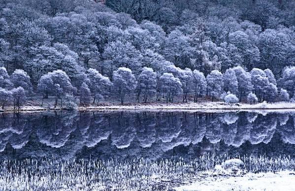 Frost Art Print featuring the photograph Glendalough National Park, County by Richard Cummins