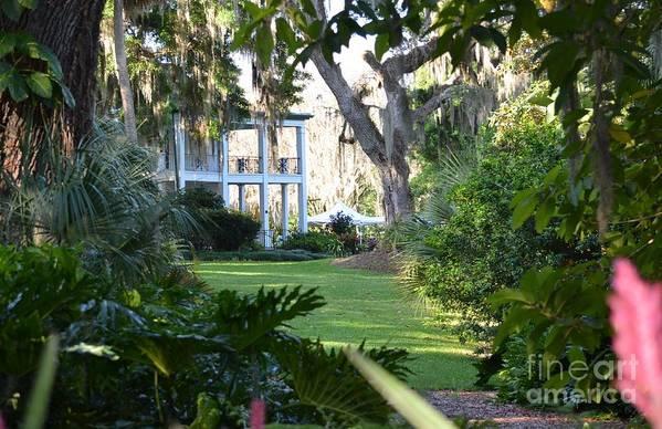 Taken At Leu Gardens In Orlando Art Print featuring the photograph Leu Gardens by Janie North