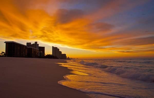 Sunset Art Print featuring the photograph Reaching Out by Justin Robertson