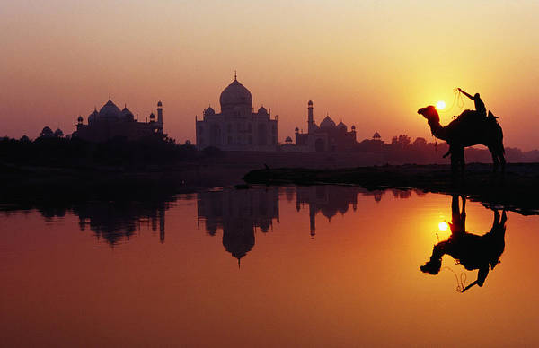 Horizontal Art Print featuring the photograph Taj Mahal & Silhouetted Camel & Reflection In Yamuna River At Sunset by Richard I'Anson