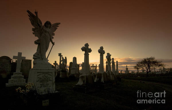 Angel Art Print featuring the photograph The Graveyard by Angel Ciesniarska