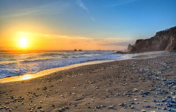 Landscape Art Print featuring the photograph Beach Of Velella by Josh Meier