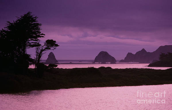 Beach Art Print featuring the photograph California, Sonoma Coast by Larry Dale Gordon - Printscapes