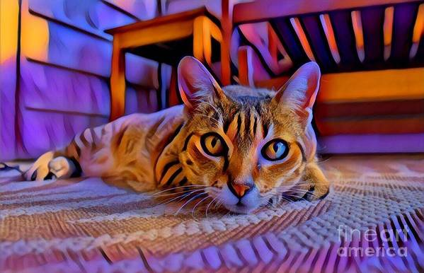 Animal Art Print featuring the photograph Cat Laying On Braided Rug by Tarisa Smith