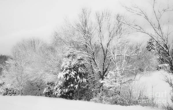 Snow Art Print featuring the photograph Country Winter by Kathy Jennings