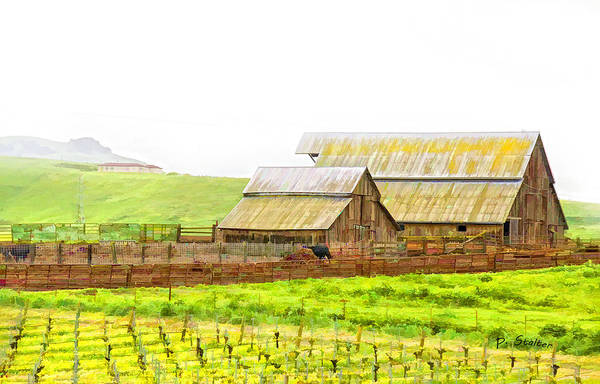 Vineyard Art Print featuring the digital art Edna Valley Ranch by Patricia Stalter