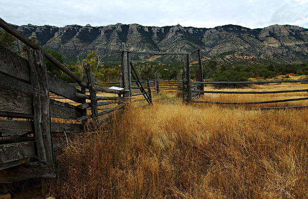 Bighorn Canyon National Recreation Area Art Print featuring the photograph Ewing-snell Ranch 1 by Larry Ricker