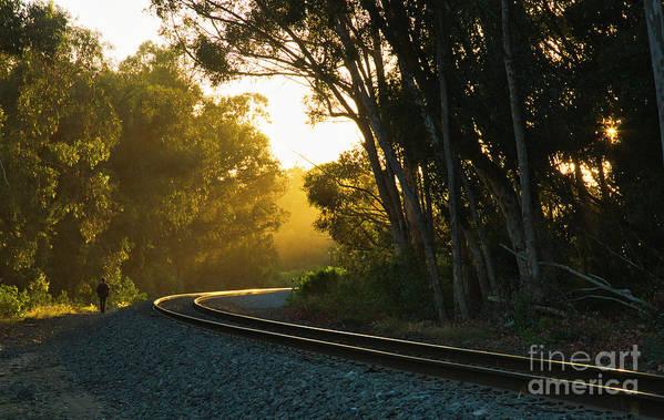Railroad Art Print featuring the photograph Golden Rails 9559l by Stephen Parker