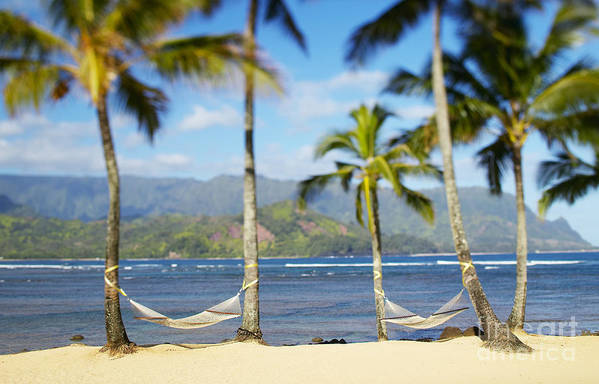 Bay Art Print featuring the photograph Hanalei Bay, Hammock by Kyle Rothenborg - Printscapes