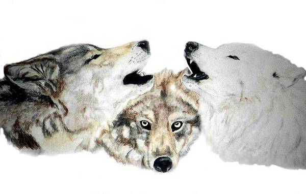 Wolves Art Print featuring the painting Howling by Debra Sandstrom