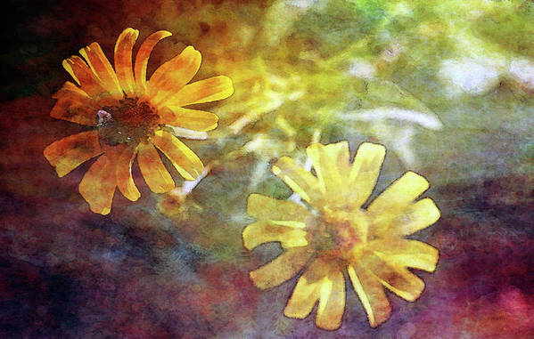 Impression Art Print featuring the photograph Light From Behind 5064 Idp_2 by Steven Ward