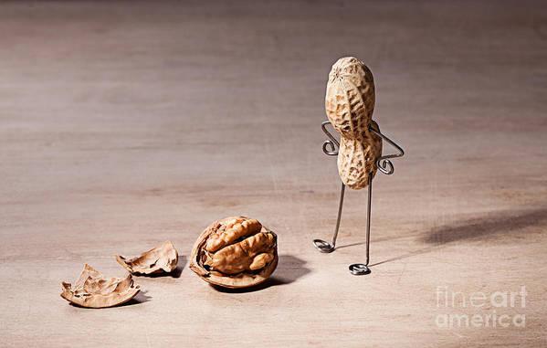Peanut Art Print featuring the photograph Lost Brains 01 by Nailia Schwarz