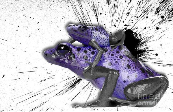 newest 500a1 c3e67 Imia Design Art Print featuring the digital art Purple Poison Dart Frogs No  01 by Maria