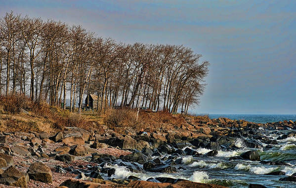 Lake Superior Art Print featuring the photograph Superior Shore by Laurie Prentice