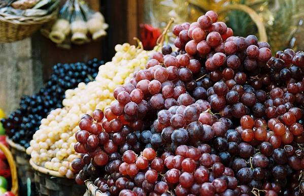 Grapes Art Print featuring the photograph The Drink Of Italy by Kathy Schumann