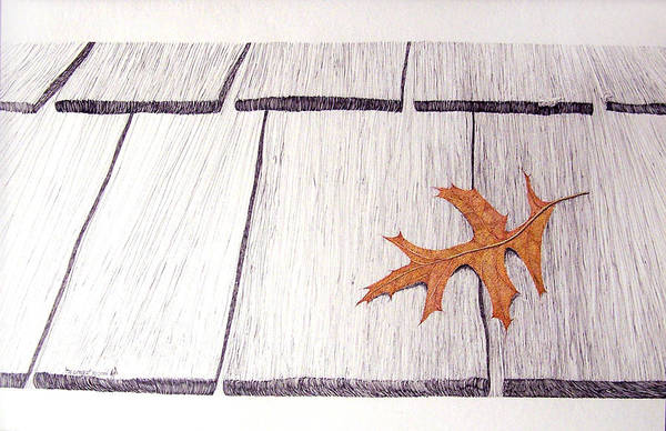 Still Life. Dry Leaf Art Print featuring the drawing The Loner by A Robert Malcom