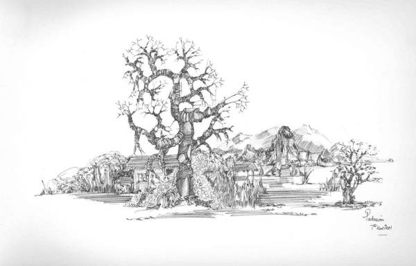 Landscape Art Print featuring the drawing Tree And Some Rocks by Padamvir Singh