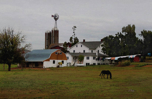 Overcast Art Print featuring the photograph Amish Wash Day by Gordon Beck