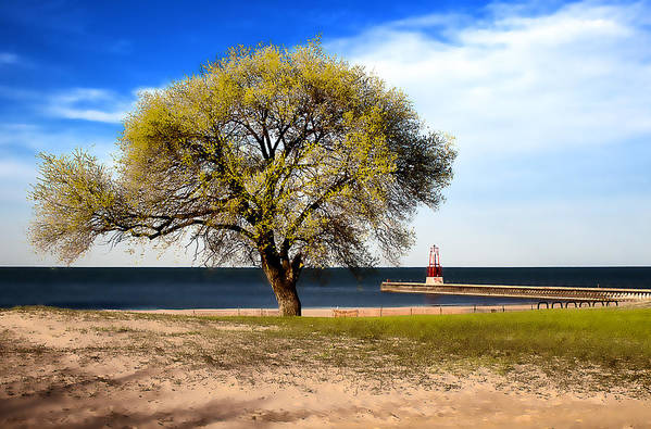 Lake Art Print featuring the photograph Art By The Lake by Milena Ilieva