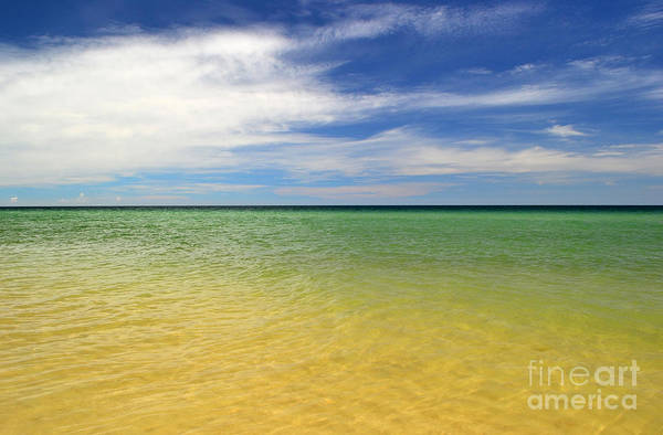 Landscape Print featuring the photograph Beautiful St George Island Water by Holden Parker