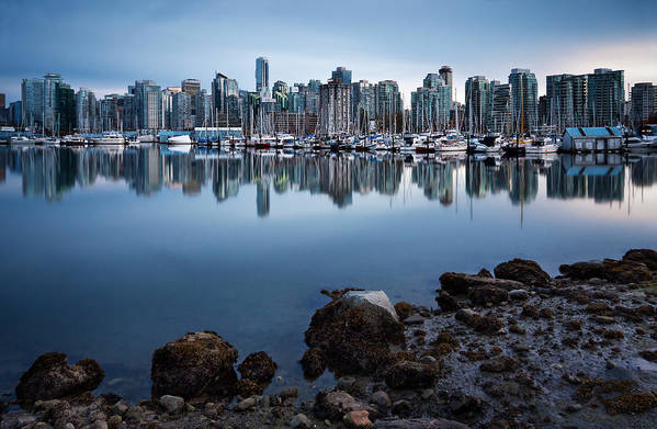 Vancouver Art Print featuring the photograph Blue Steel by Alexis Birkill