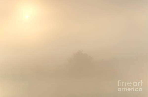 Fog Art Print featuring the photograph Breaking Through by Mike Dawson