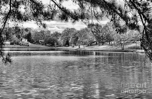 Tennessee Art Print featuring the photograph Bw Lake Views by Chuck Kuhn