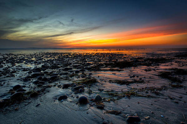 Cardiff Reef Art Print featuring the photograph Cardiff Reef by Brian Hayashi