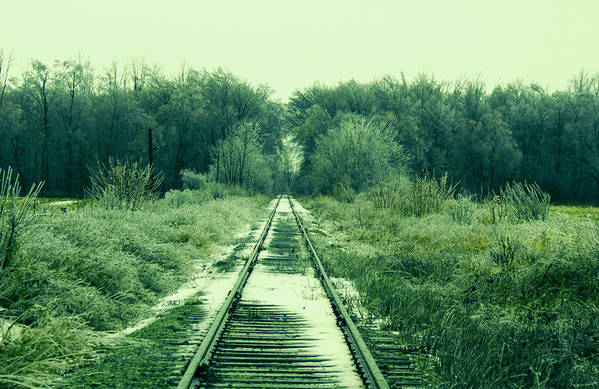 Landscape Art Print featuring the photograph Cold Steel Rails by John Turner