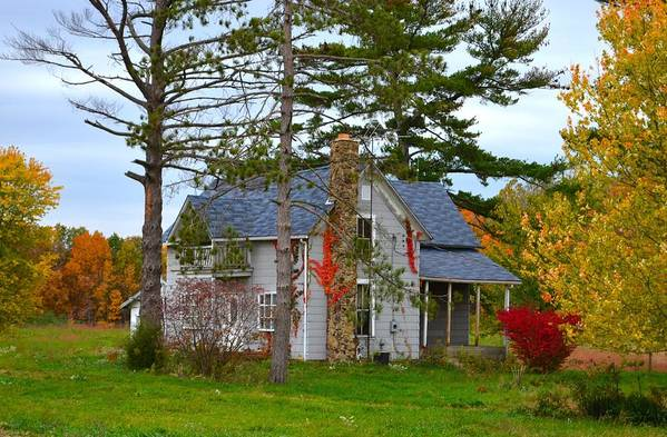 Country Cottage Art Print featuring the photograph Country Cottage by Julie Dant
