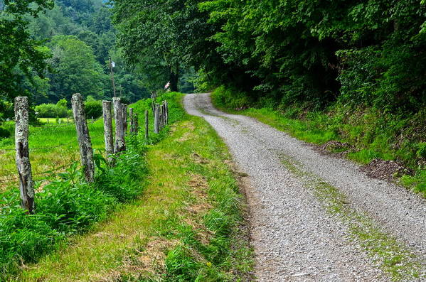 Country Art Print featuring the photograph Country Road by Frozen in Time Fine Art Photography