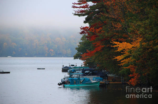 Fall Colors Art Print featuring the photograph Fall On Little Squam by Michael Mooney