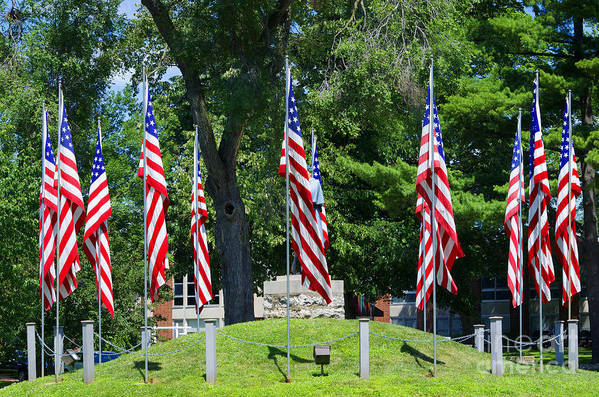 American Flag Art Print featuring the photograph Flag - Illinois Veterans Home - Luther Fine Art by Luther Fine Art