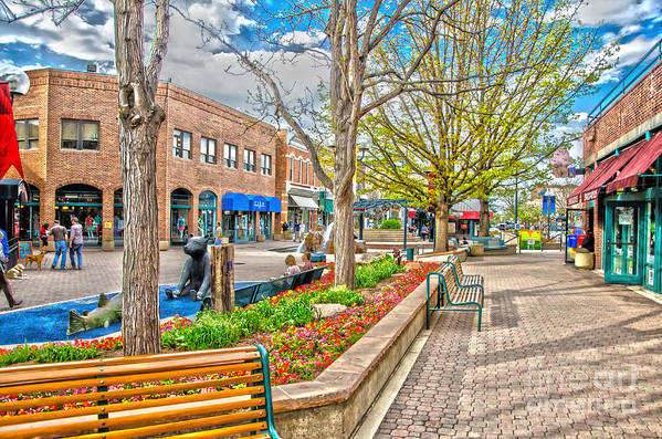 City Of Fort Collins Art Print featuring the photograph Fort Collins by Baywest Imaging