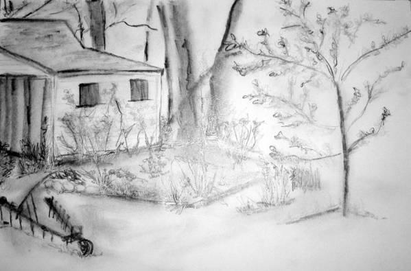 Grandpa's Backyard Art Print featuring the drawing Granpa's Backyard IIi by Helena Bebirian